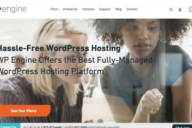 WPEngine Hosting Reviews | Recommended WordPress Hosting For 2016